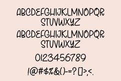 Web Font Rustic Teak - a quirky handwritten font Product Image 4