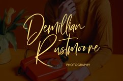 Sallymoores Signature Brush Font Product Image 4