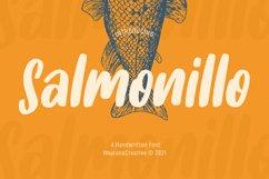 Salmonillo Handwritten Font Product Image 1
