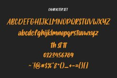 Salmonillo Handwritten Font Product Image 6