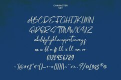 Salvadores Signature Script Font Product Image 6