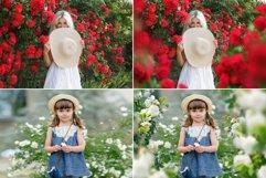 45 Rose Photo Overlays Product Image 2