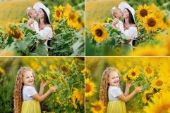 40 Sunflower Photo Overlays Product Image 3