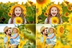 40 Sunflower Photo Overlays Product Image 2
