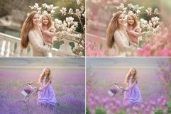 40 Painted Flowers Photo Overlays Product Image 2