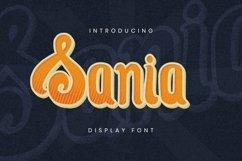 Web Font Sania Font Product Image 1