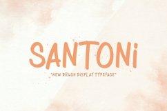 Web Font Santoni Product Image 1