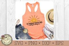 I'm Actually Really Nice-SVG-Sarcastic-Sunshine-Funny Humor Product Image 5