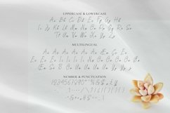 Web Font Sari Product Image 3