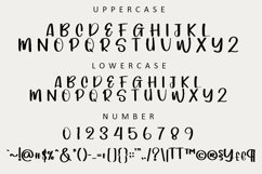 Savage - Luxury Handwritten Font Product Image 2