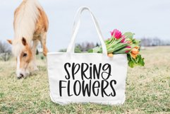 Spring Beauty - A Quirky Handwritten Font Product Image 5