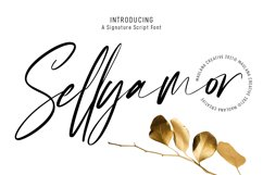 Sellyamor Signature Script Font Product Image 1
