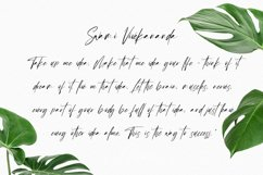 Sellyamor Signature Script Font Product Image 5