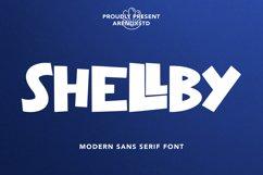 Shellby - Modern Sans Serif Font Product Image 1