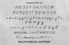 Shenisi - Beauty Calligraphy Font Product Image 6