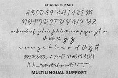Web Font Shenisi - Beauty Calligraphy Font Product Image 6