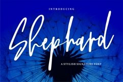 Shephard - A Stylish Signature Font Product Image 1