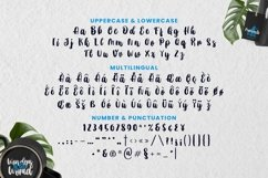 Web Font Smooth Root Font Product Image 5