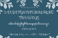 Smoothing - Modern Script Font Product Image 4
