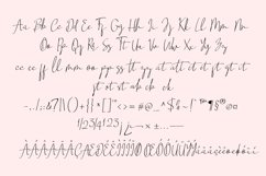 Snowhosta - handwritten script font Product Image 5