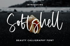 Softshell - Beauty Calligraphy Font Product Image 1