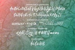 Web Font Soogeil - A Stylish Brush Font Product Image 5
