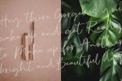Signature font duo Sophia Reign Product Image 5
