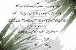 Web Font Sotune - Signature Script Font Product Image 4