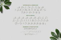 Web Font Soundance Product Image 4