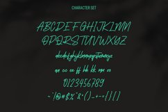 Southavely Script Signature Font Product Image 2