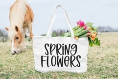 Web Font Spring Beauty - A Quirky Handwritten Font Product Image 6