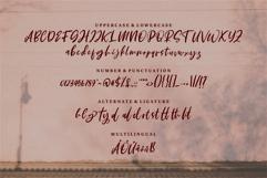 Web Font Starling - A Beauty Script Font Product Image 4