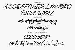 Web Font Starry Damsel - a signature script font Product Image 4