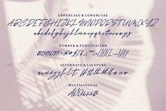 Web Font Statel - Beauty Signature Font Product Image 6