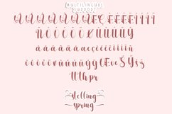 Stelling Spring - A Romantic Font Product Image 6