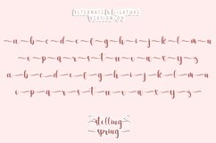 Stelling Spring - A Romantic Font Product Image 3