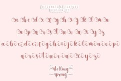 Stelling Spring - A Romantic Font Product Image 5