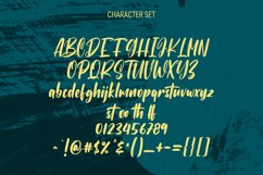 Subcultures Handwritten Display Font Product Image 6