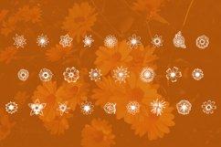 26 illustrations of summer flowers: sunflower, roses,  daises