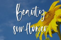 Summer Weather - Beauty Handwritten Font Product Image 3