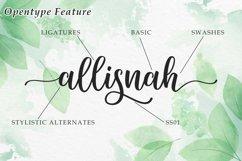 Sunkiss | A Beautiful Script Font Product Image 6