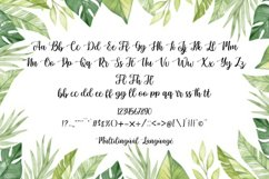 Sunkiss | A Beautiful Script Font Product Image 3