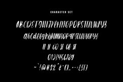 Switch Sister Brush Font Product Image 3