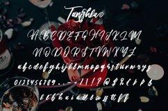 Tanishka - Beauty Handwritten Font Product Image 6