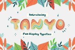 Tanyo Typeface Product Image 1