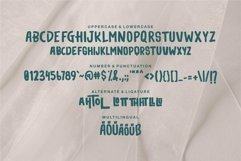 Web Font Tehtom - Brush Bold Font Product Image 6