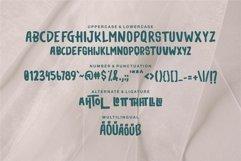 Tehtom - Brush Bold Font Product Image 6
