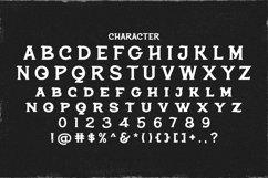 Web Font Terota Product Image 5
