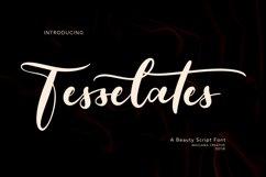 Tesselates Beauty Script Font Product Image 1