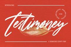 Testimoney Signature Font Product Image 1